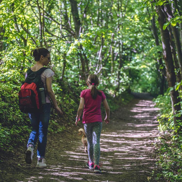 Contato com a natureza traz benefícios para a saúde